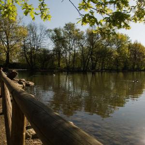 Park of Legnano